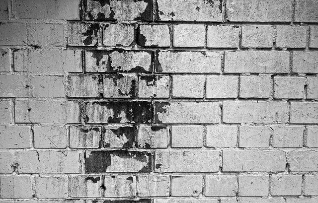רטיבות ועובש בקירות